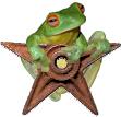 Amphibian Barnstar.jpg