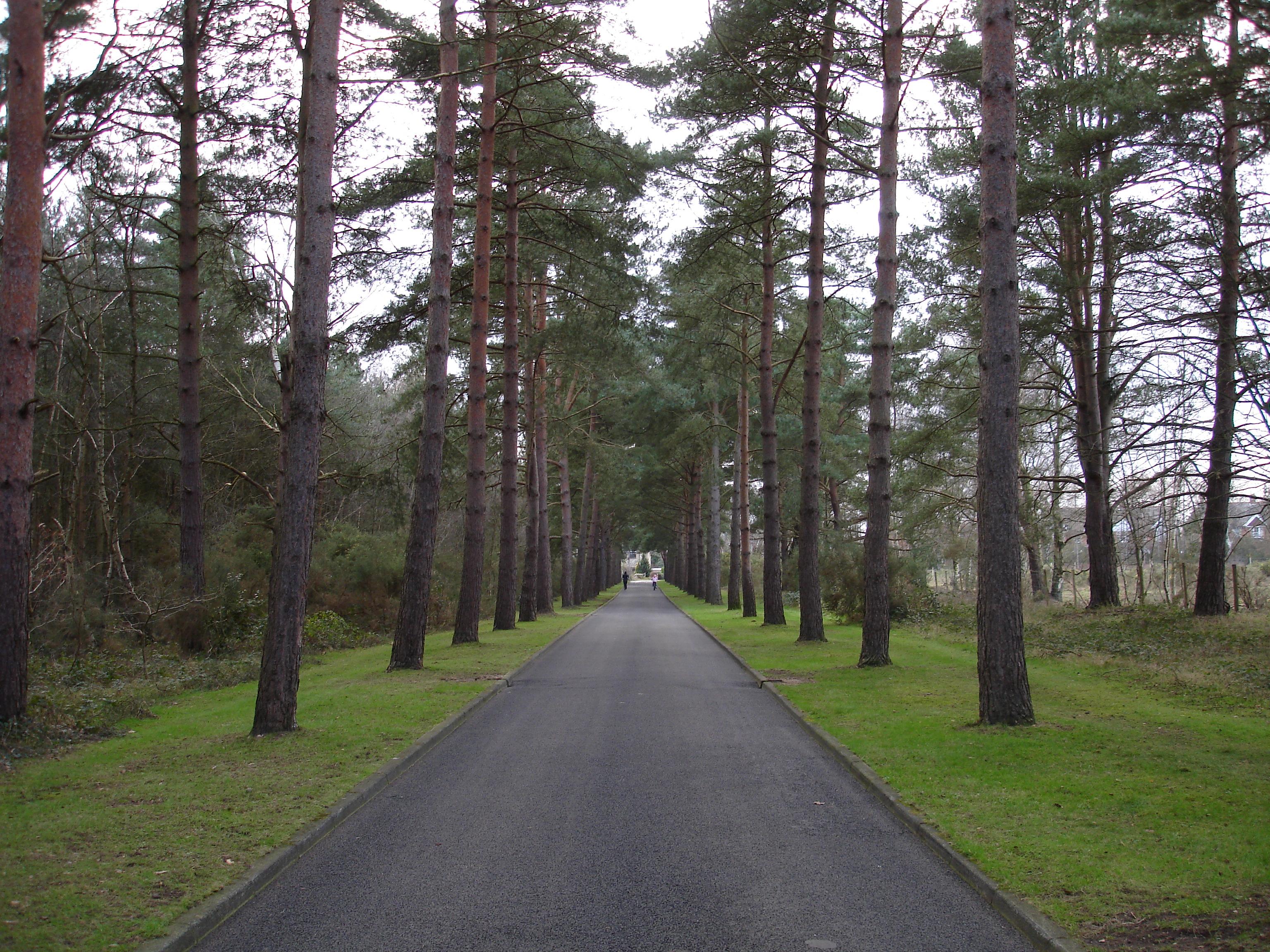 Brookwood Mezarlığı