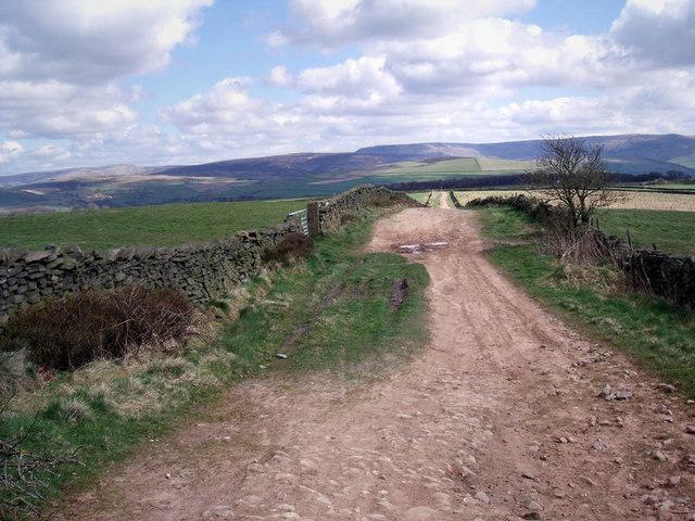 Black Lane - geograph.org.uk - 1245827