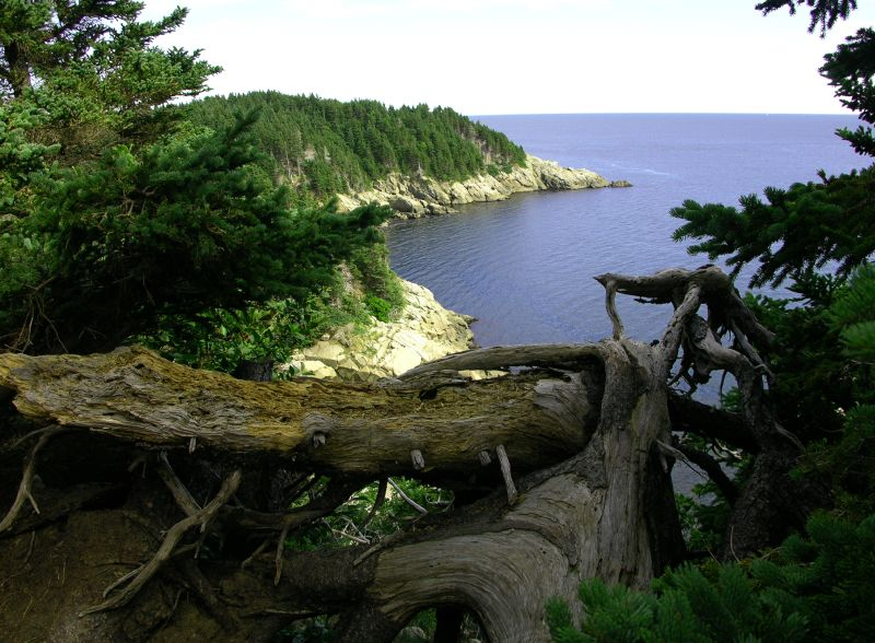 File:Cape breton island 1.jpg - Wikipedia, the free encyclopedia