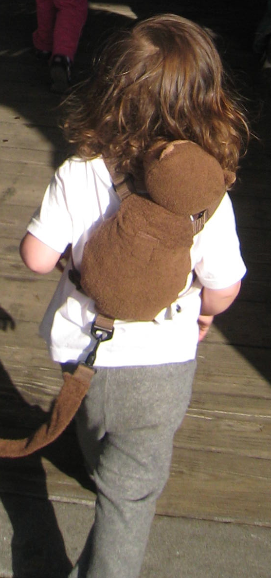 Autism Child Safety Walk Harness Special Needs Shoulder Reins Straps ADHD