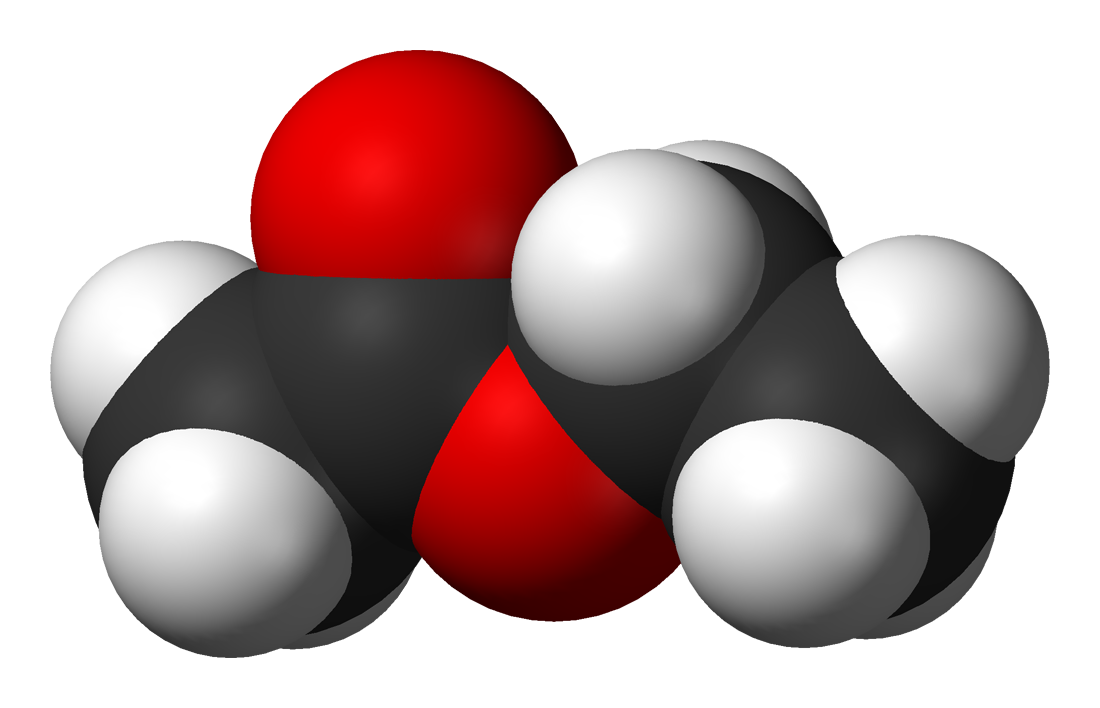 ethyl acetate About the skin deep® ratings ewg provides information on personal care product ingredients from the published scientific literature, to supplement incomplete data available from companies and the government.