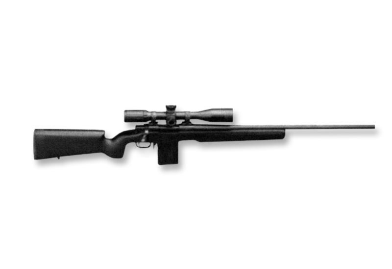 Bolt Action As Designated Marksman S Rifle