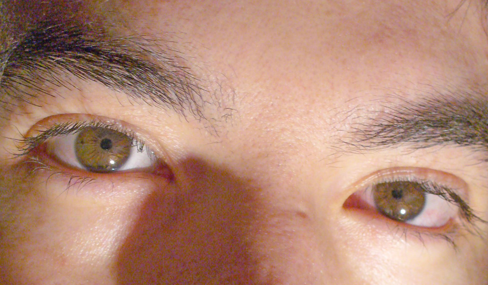 Eyes Of A Blue Dog Symbolism