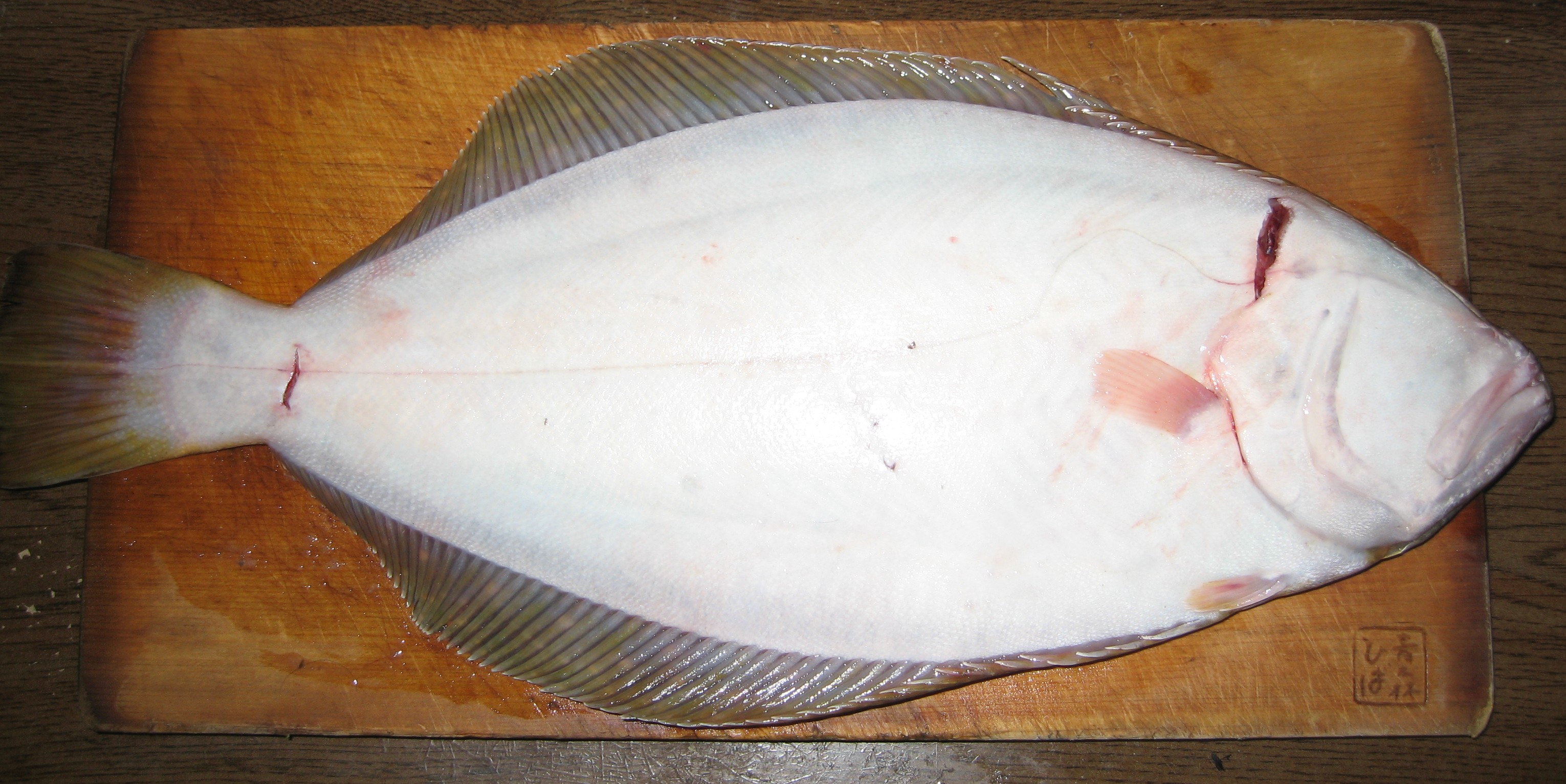 Hirame flatfish back