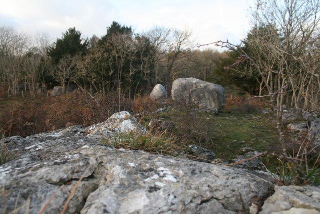 Limestone boulders, Warton Crag - geograph.org.uk - 1047895