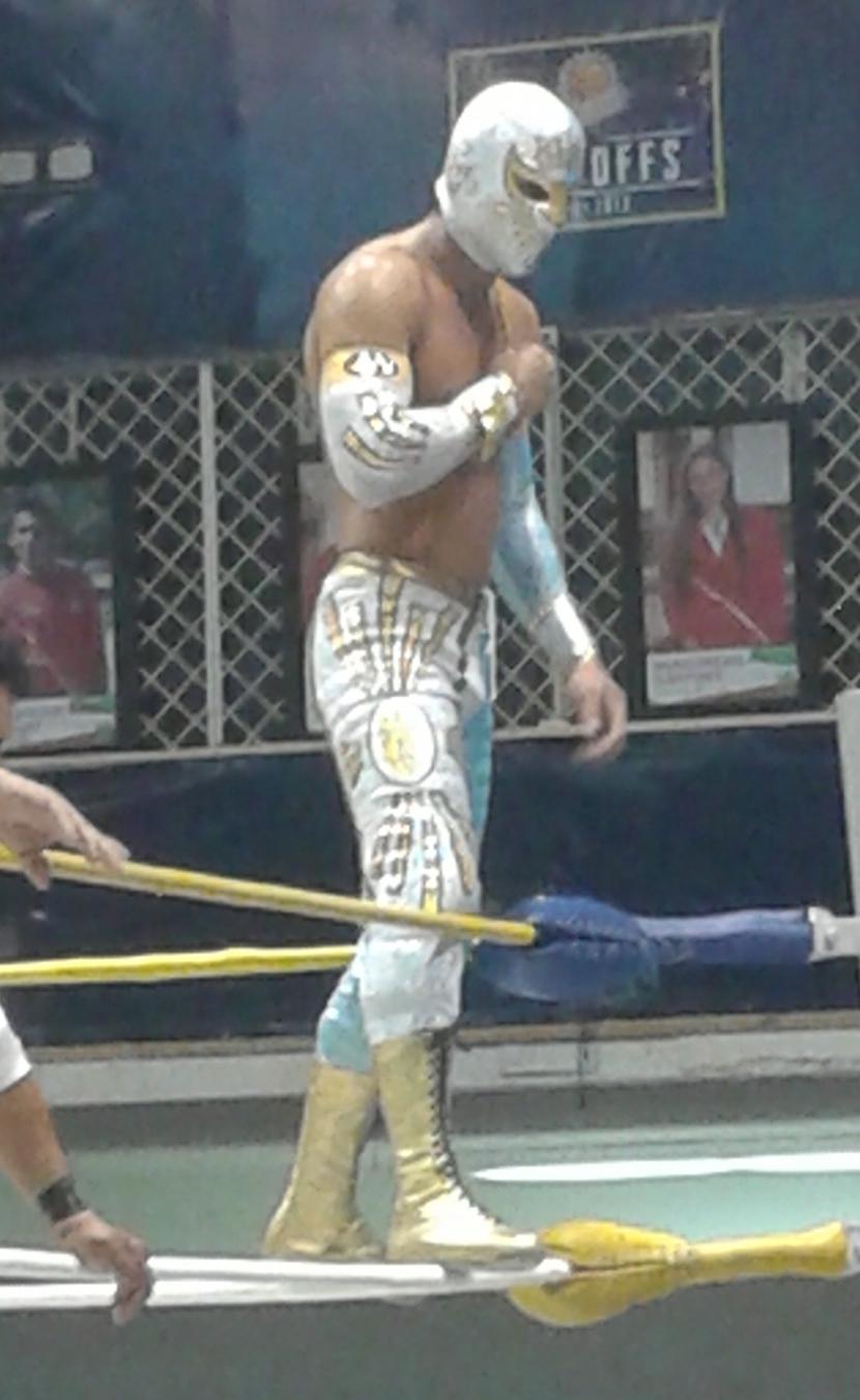 Lucha libre mascara vs bikini - 1 part 4
