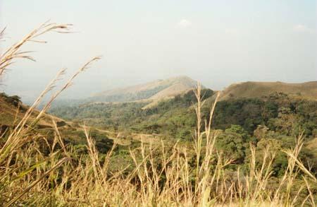 הר נימבה