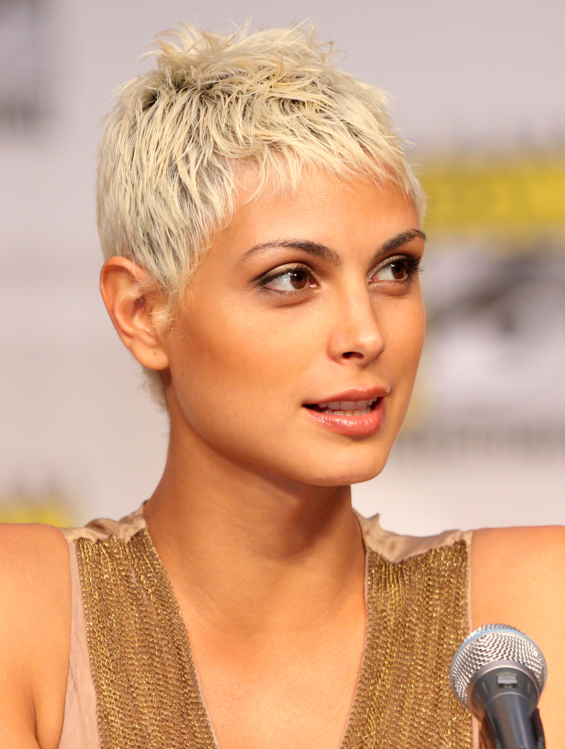 Morena Baccarin earned a  million dollar salary, leaving the net worth at 2 million in 2017