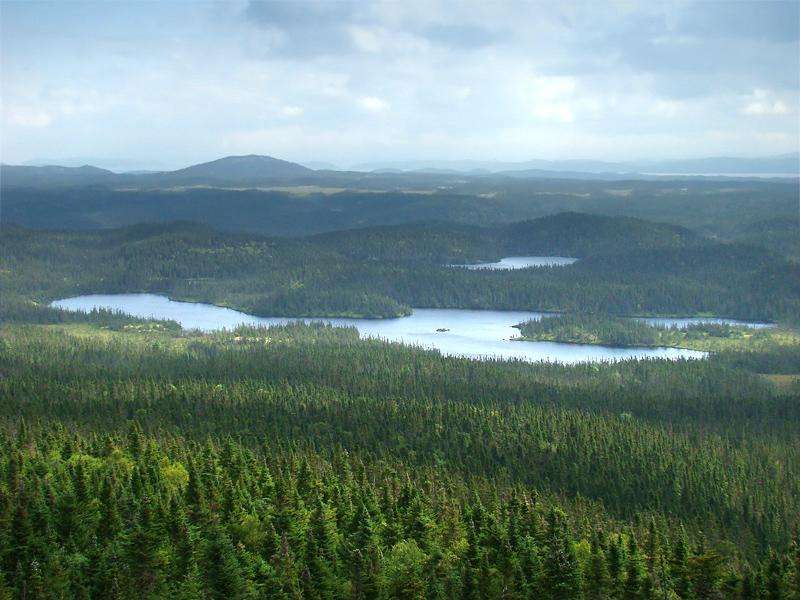 Parco nazionale di terranova wikipedia for Gros morne cabine del parco nazionale