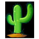 Cacti hoeven amper water, daarom past-ie wel goed in een stoffig hoekje als dit:) Filosofisch hè?