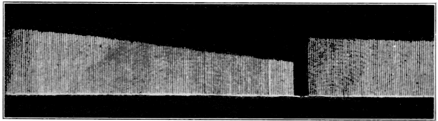File:PSM V76 D197 Graph of a frog gastrocnemius muscle ...