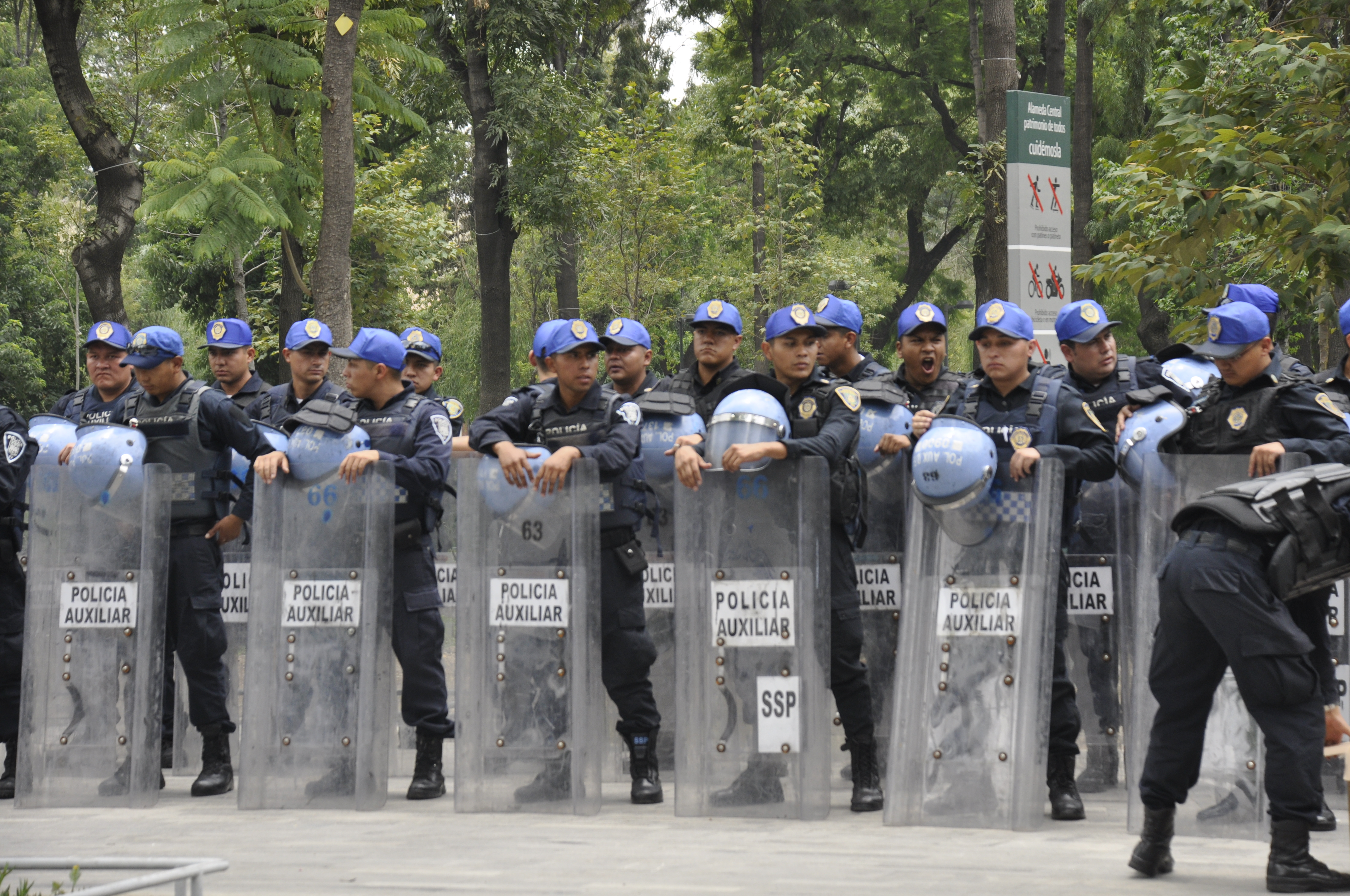 Image result for police mexico