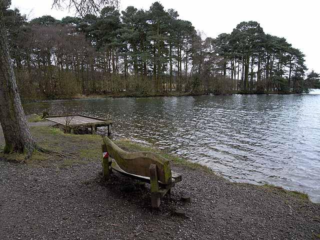 Sedge Bay, Talkin Tarn - geograph.org.uk - 1132318