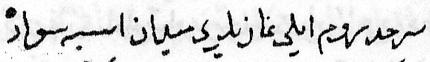 Surname-i hümayun detail.png