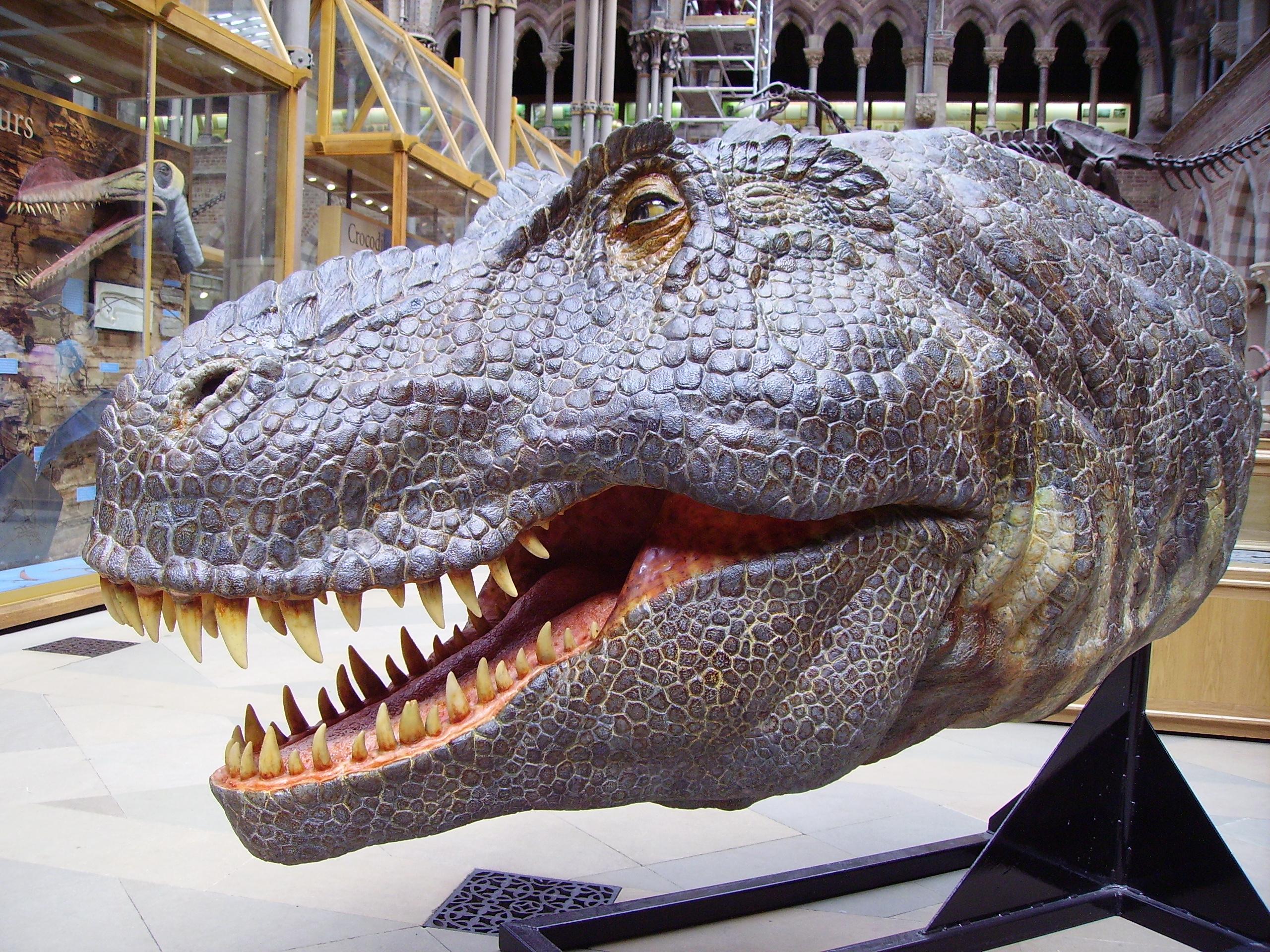 Animatronic Dinosaurs Heard Natural History Museum
