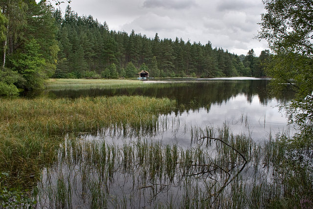 The loch at Glen Tanar House - geograph.org.uk - 928726