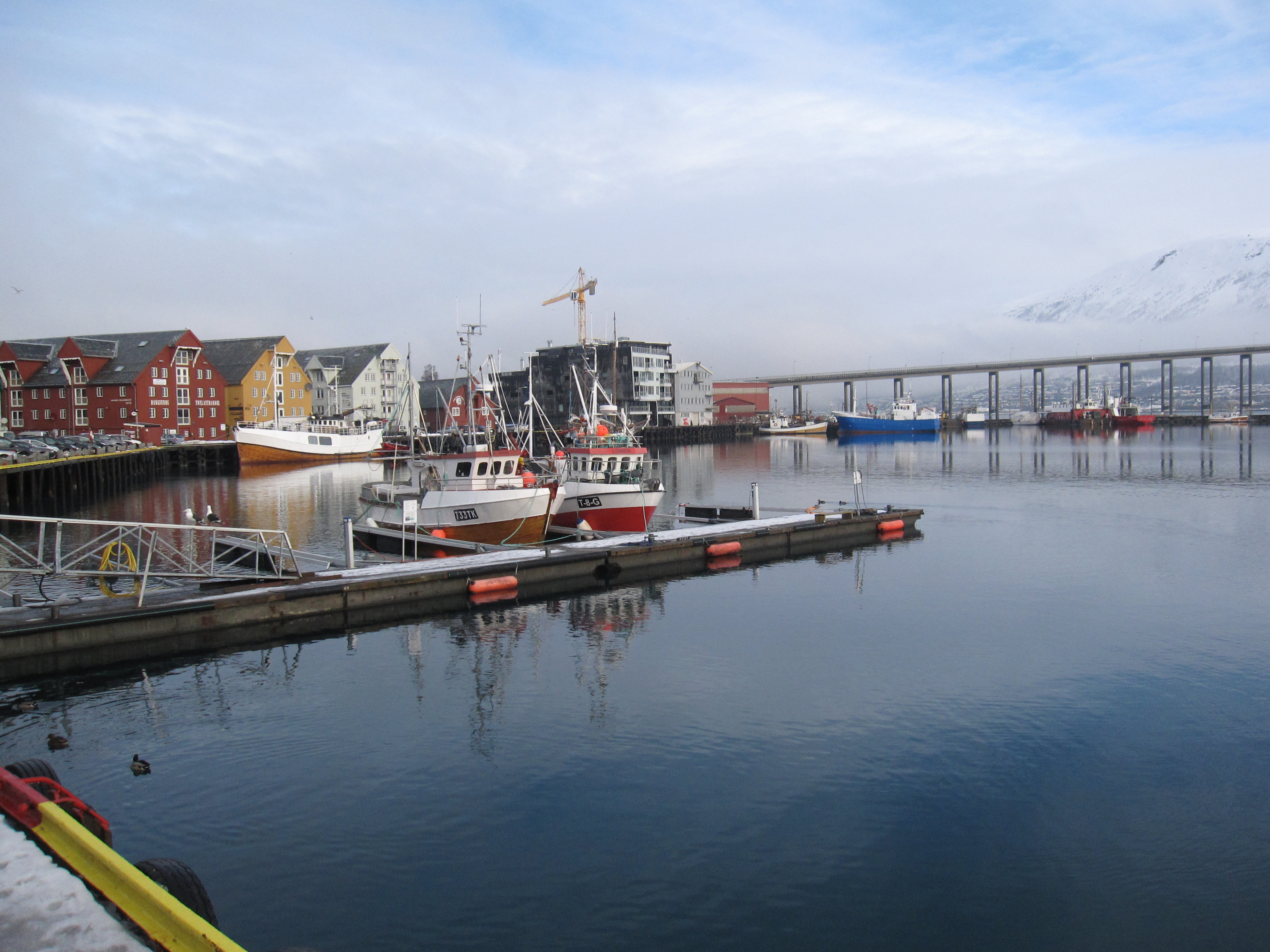 tromso docks