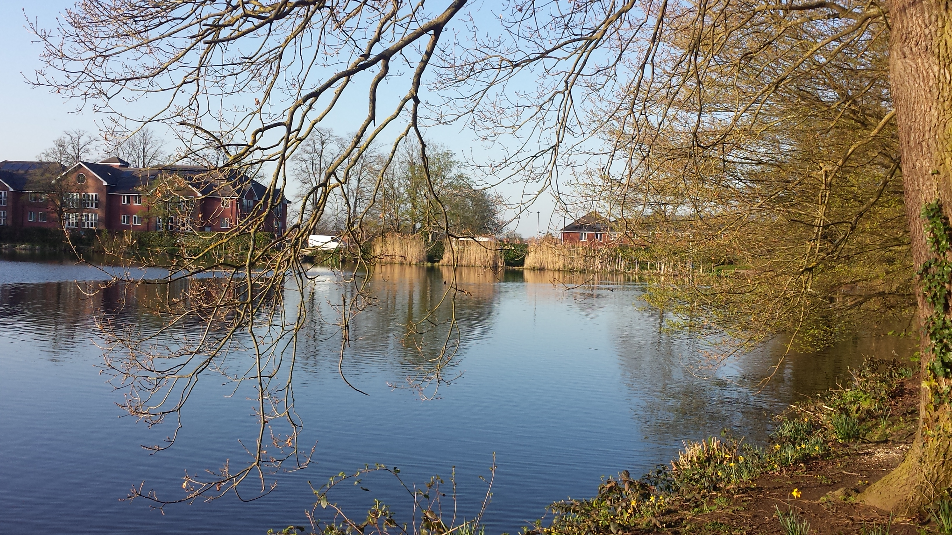 Image result for whiteknights lake reading