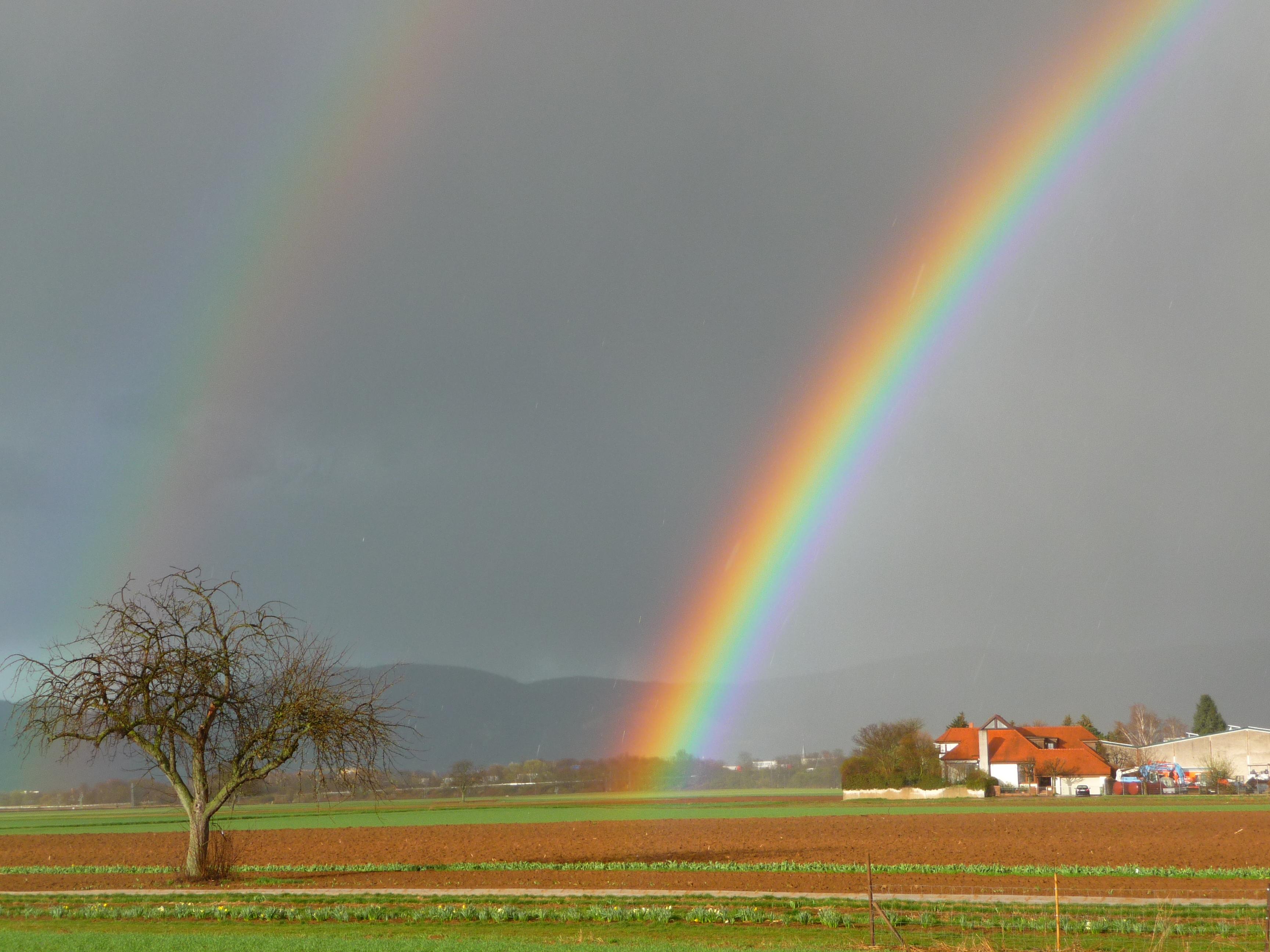 Wie der Regenbogen durch