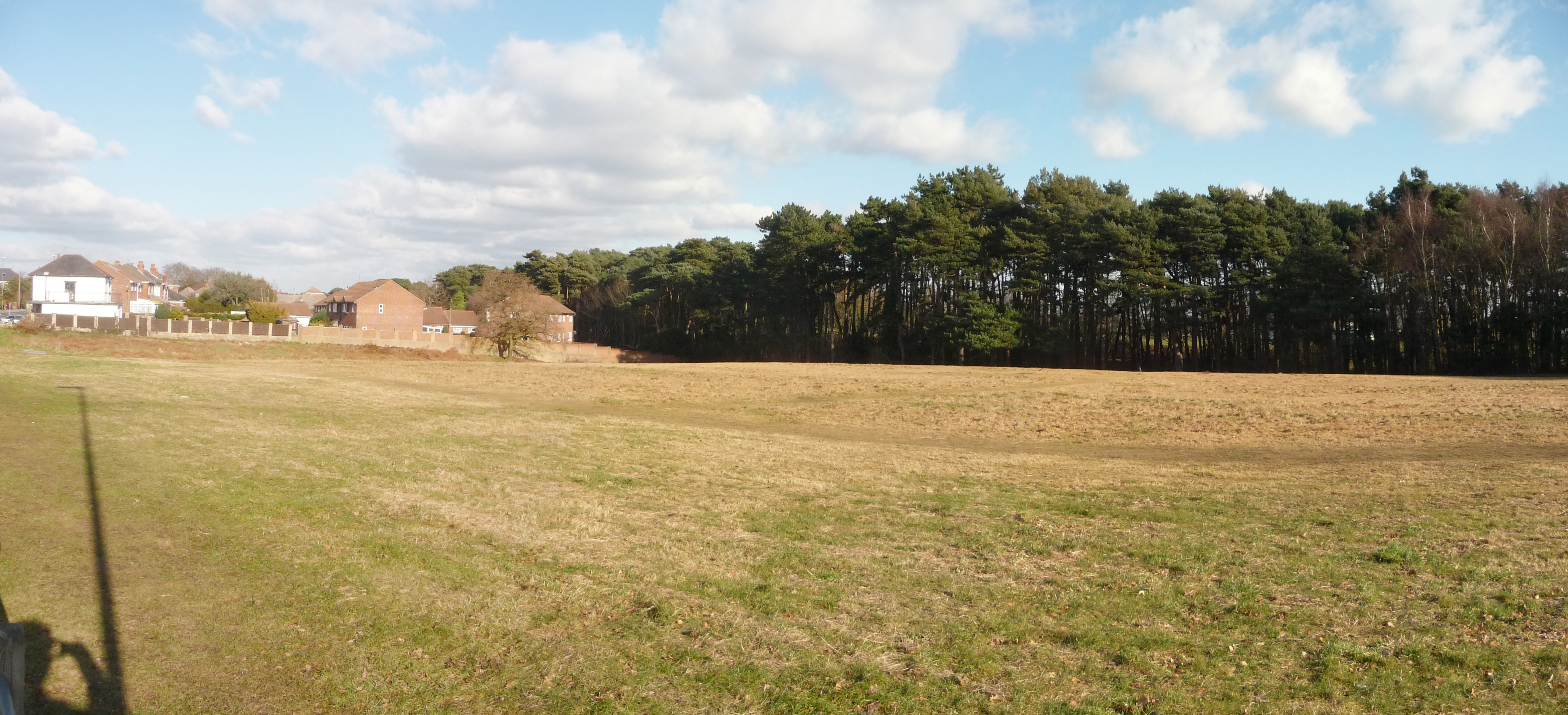 Bournemouth_%2C_Grassy_Field_and_Trees_-_geograph.org.uk_-_1703915.jpg