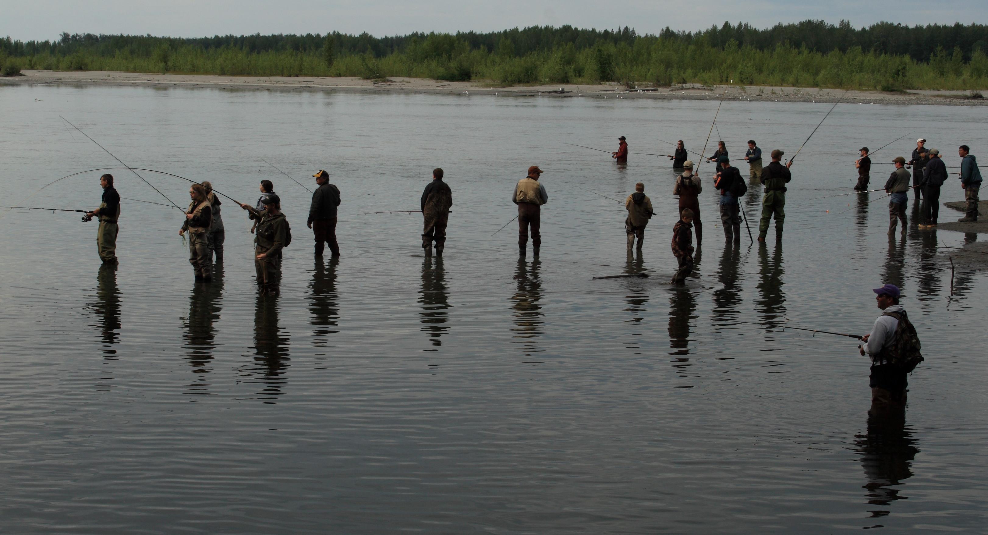 File:Combat fishing for king salmon near Montana Creek, Alaska.jpg - Wikimedia Commons