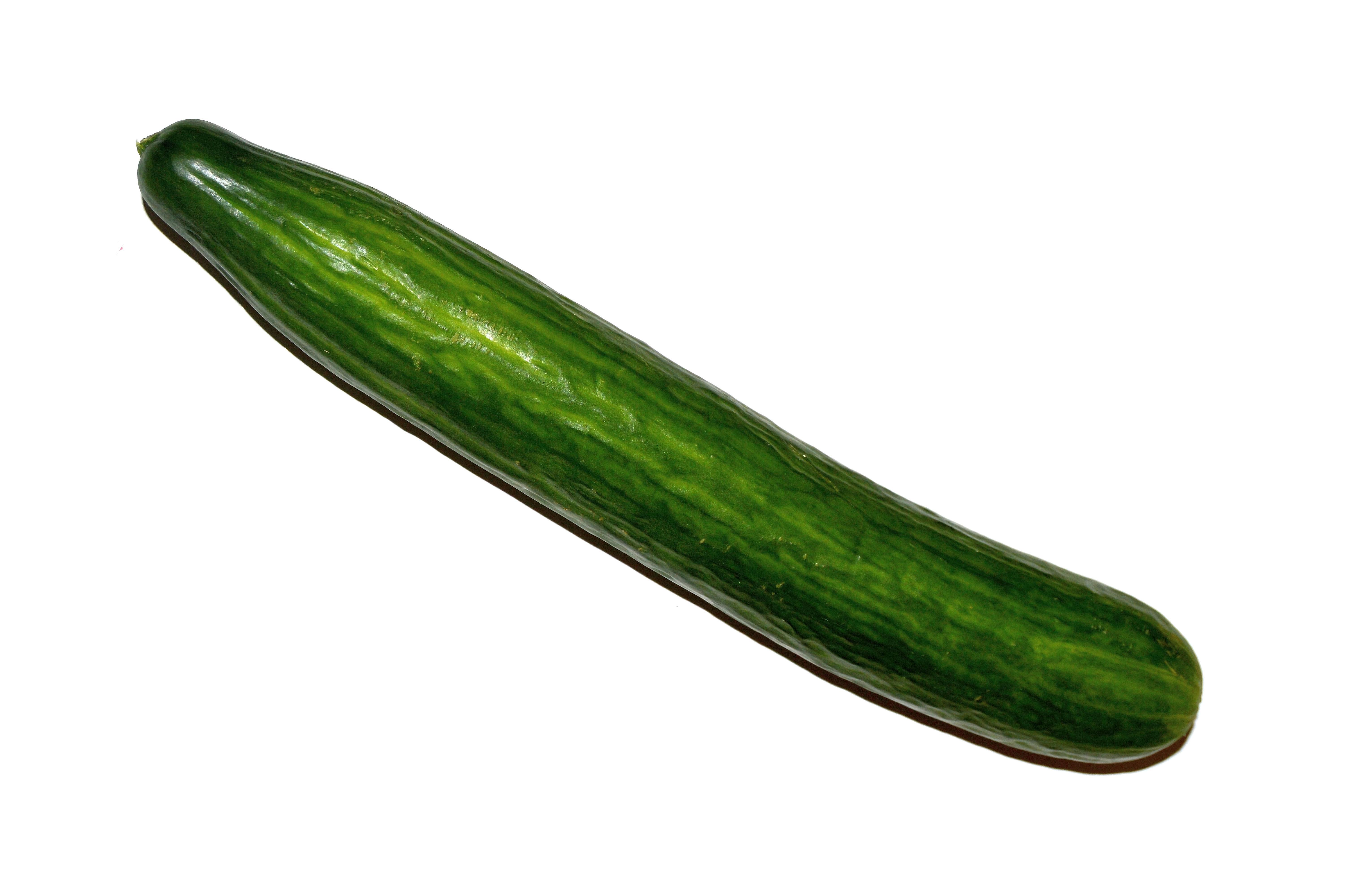 Cucumber Penis 53