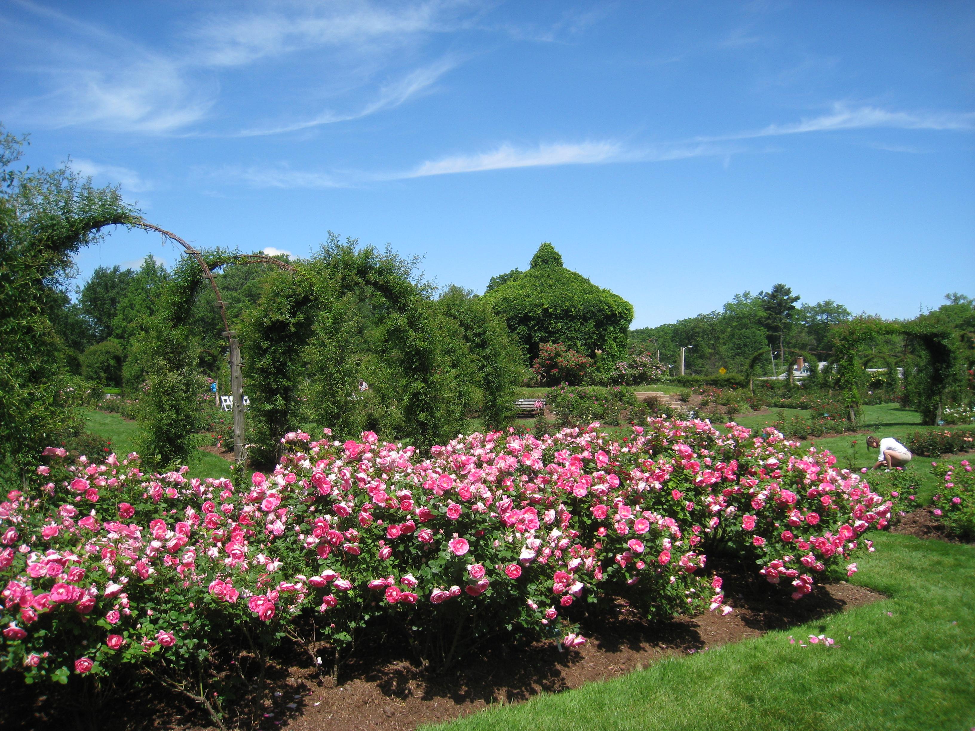 set de jardin