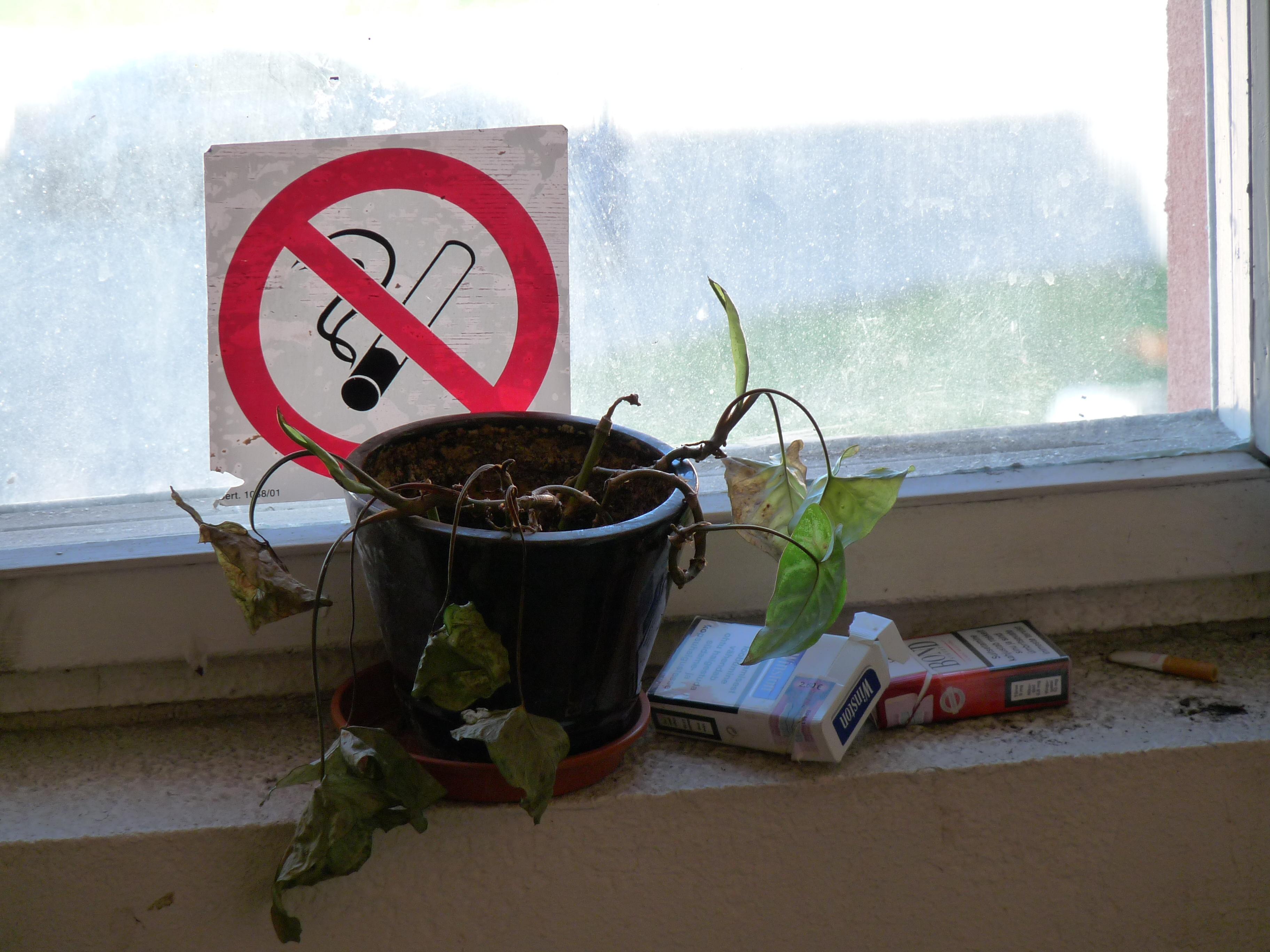 Mediusinfo.ru - минздрав поддержал запрет на курение у подъе.
