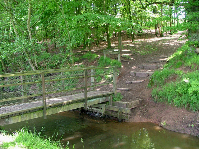 Footbridge in Ladderedge Country park - geograph.org.uk - 452278