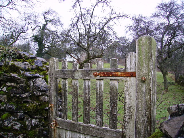 Gate and Orchard - geograph.org.uk - 336062