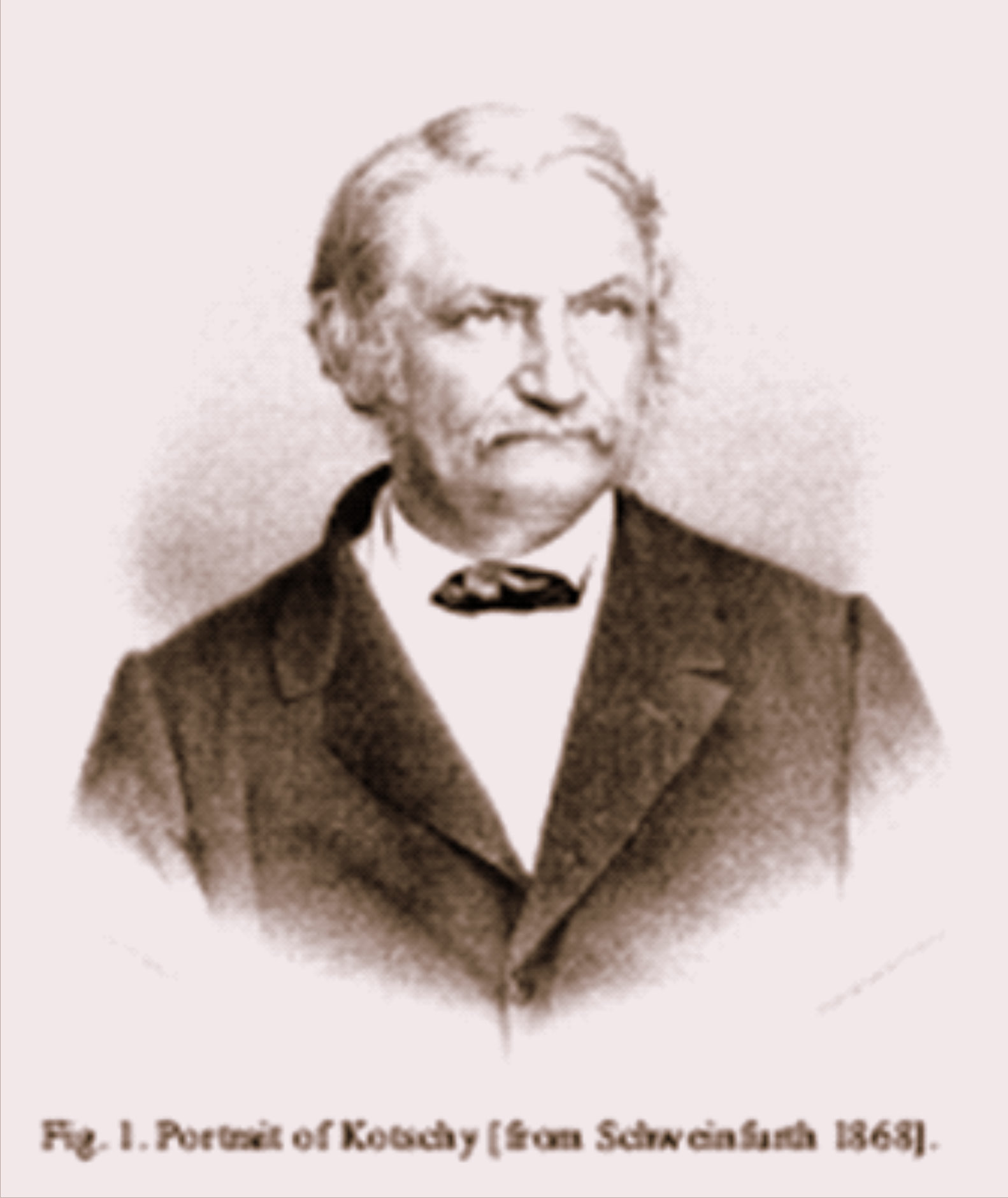 Depiction of Theodor Kotschy