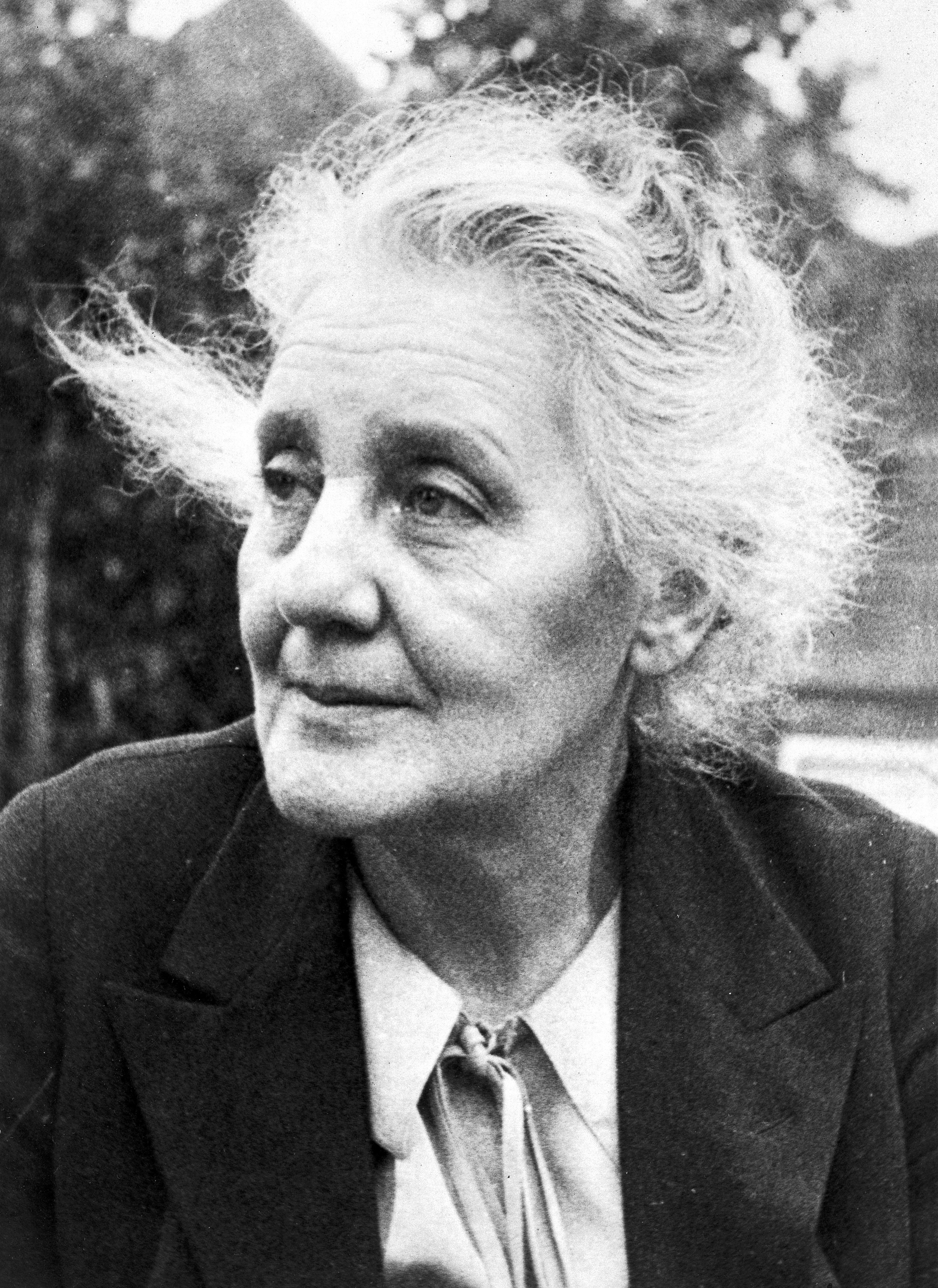 an overview of the works of melanie klein View and download powerpoint presentations on melanie klein ppt  overview historical antecedents zeitgeist  thanks to the work of john bowlby and.