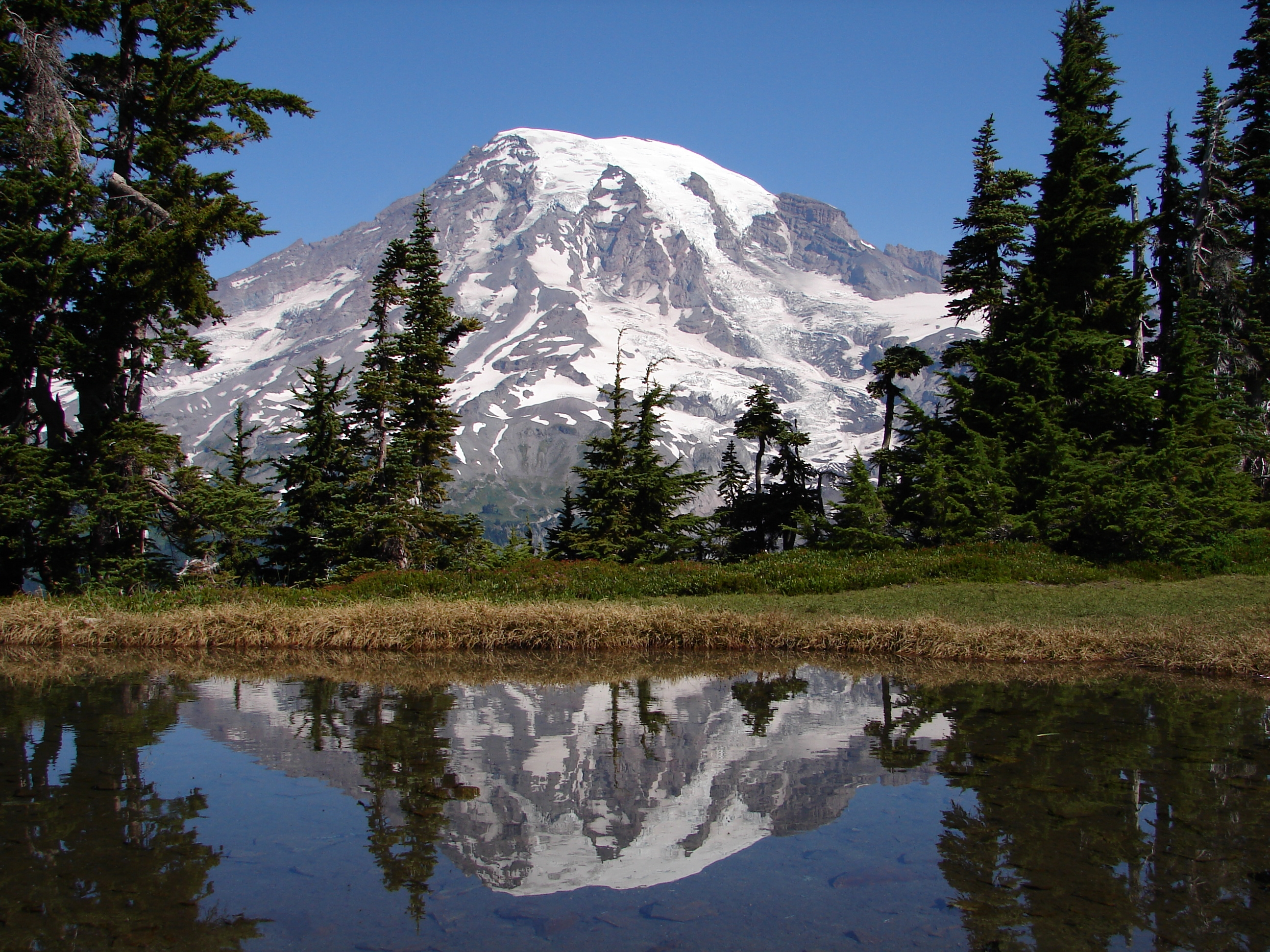 mount rainier milfs dating site Volcanic history  mount rainier has a long eruptive history dating back perhaps a million years most of the cone is made up of thin lava flows interspersed with volcanic ash and mudflows.