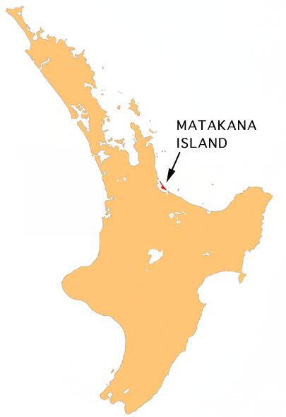 Matakana Island
