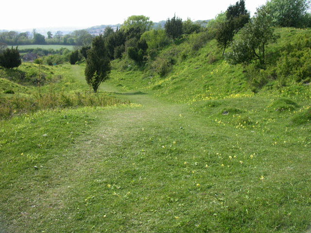 Noar Hill Wildlife Reserve - geograph.org.uk - 31331
