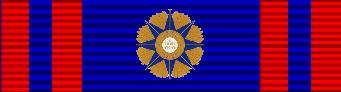 Большой крест ордена Пия IX