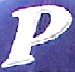 Police Baseball Team insignia.png