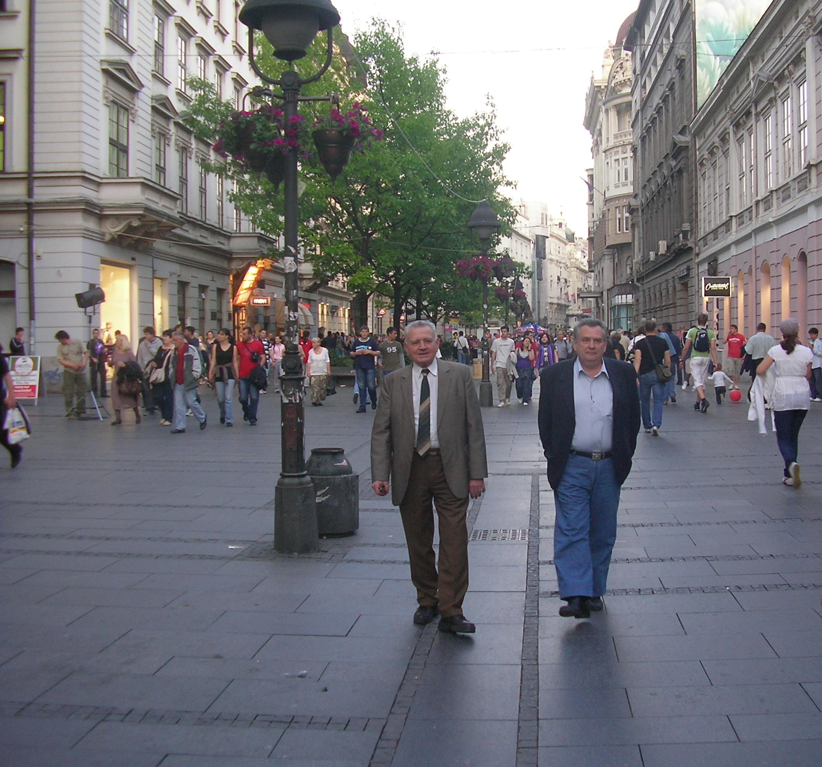 Prof. dr ivan aničin i prof. dr đuro krmpotić - nuclear physicists