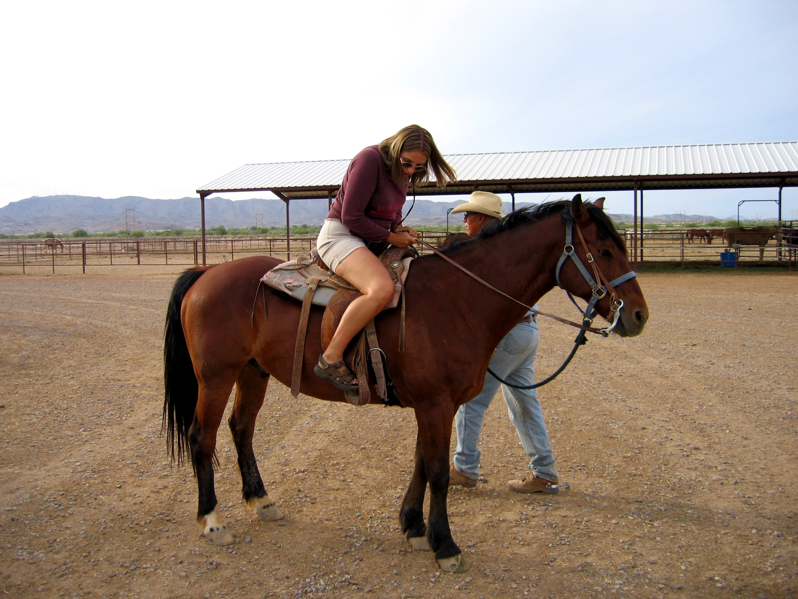 chaps equitation western
