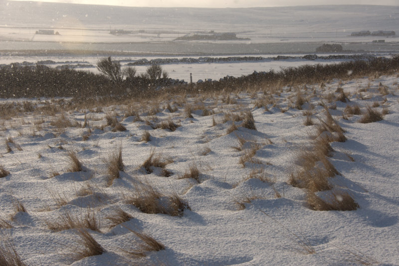 File:Sunshine and snow, Halligarth, Baltasound - geograph.org.uk - 1691774.jpg