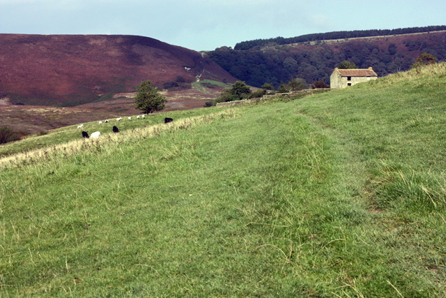 The Hole of Horcum - geograph.org.uk - 986956