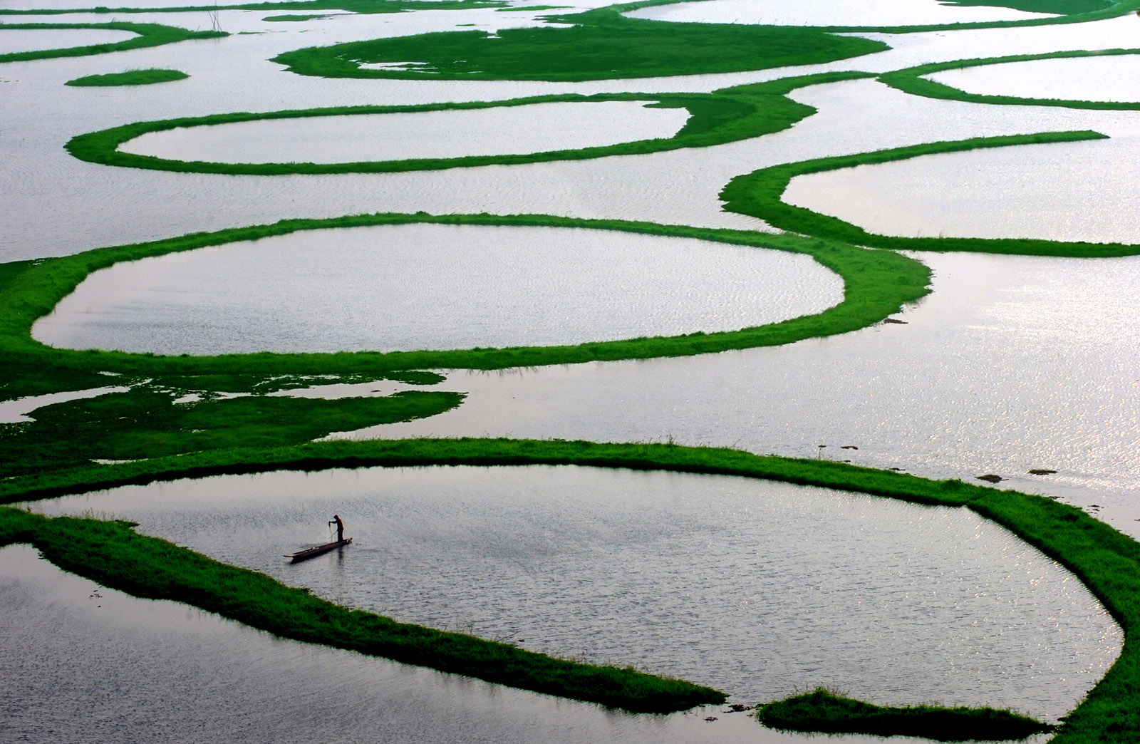 Floating Islands in Loktak Lake
