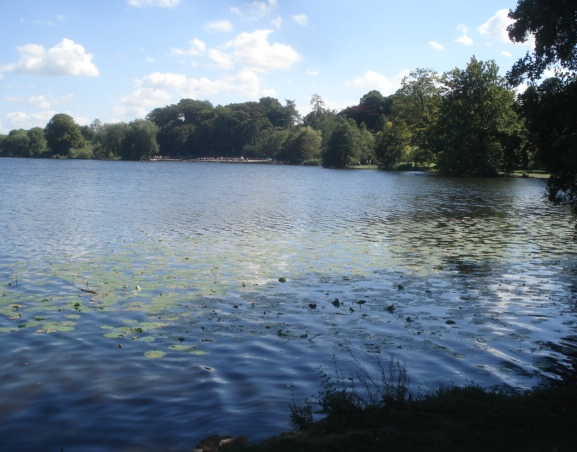 The Mere - geograph.org.uk - 544485