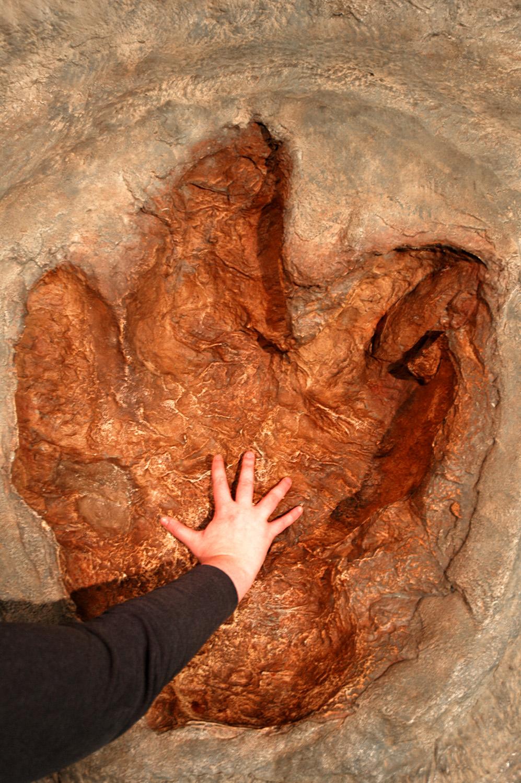Exhilarating image inside tyrannosaurus rex printable