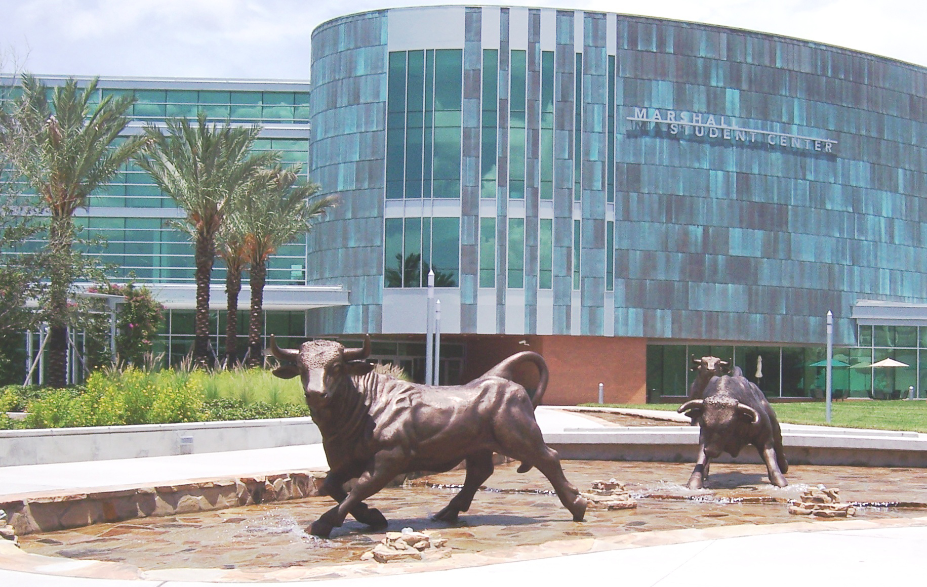 cm s guide to the university of south florida college magazine commons org