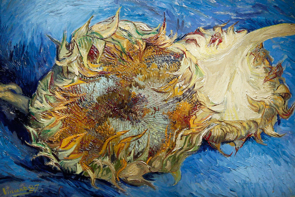 File Vincent Van Gogh S Painting Sunflowers 1887 Jpg Wikimedia