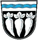 Gemeinde Pfatter
