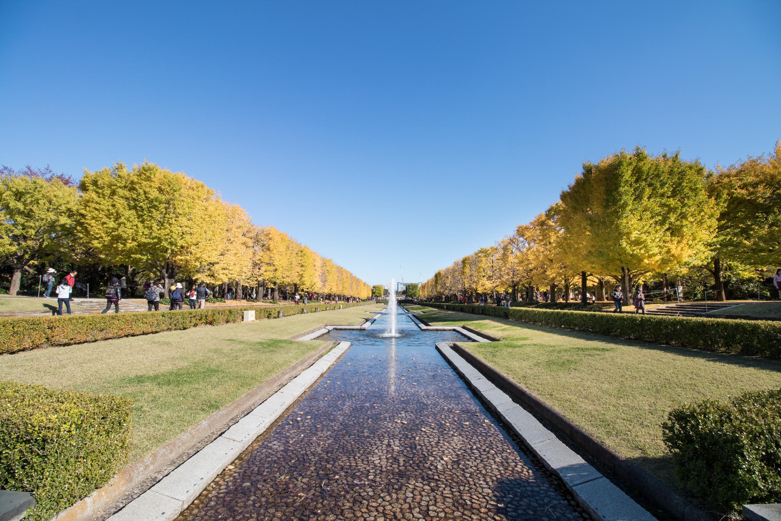 「昭和記念公園」の画像検索結果