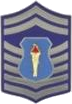 AFJROTC SMSGT insignia.png